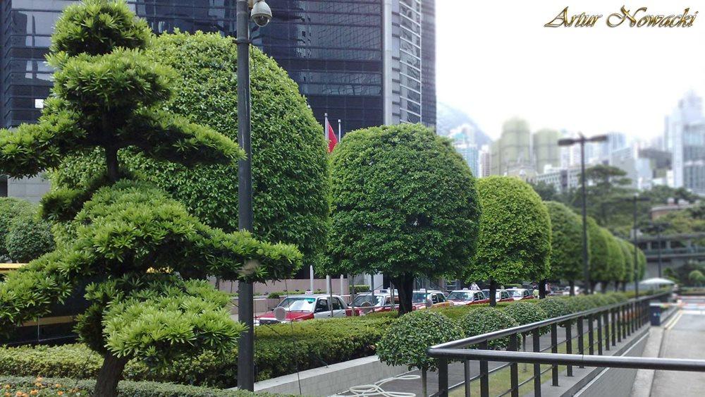 Behind the Bank of China Tower